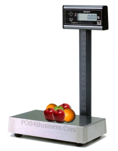 Avery Berkel 6710 - Pole Display